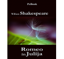 Romeo in Julija (e-knjiga)