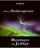 Romeo in Julija (e-knjiga)